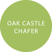 Oak Castle Chafer