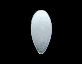 Ovale Glasschale  6512G382